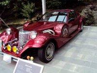 В экспозиции музея представлены классические автомобили США, Европы и Азии. Здесь можно встретить как редкие авто начала прошлого века, так и более поздние шедевры автомобильной промышленности.